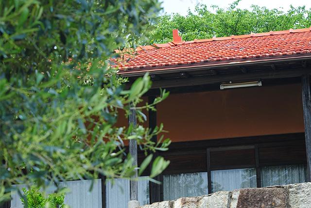 赤屋根_牛窓オリーブ園のフォトスポット