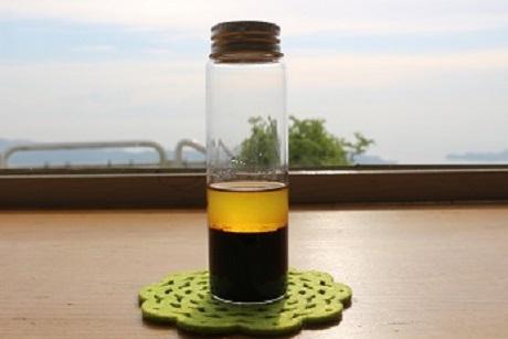 【農園だより】オリーブの搾油できました!!