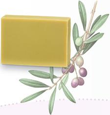 エキストラバージンオリーブオイル トルトサ