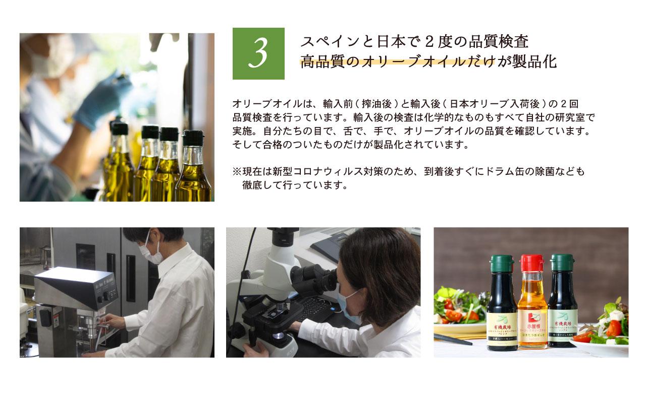 オリーブ食品人気アイテム体験セット